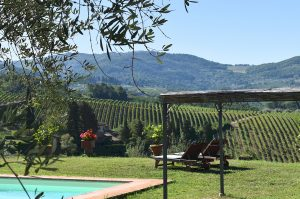 Vacation apartment in Chianti with swimming pool
